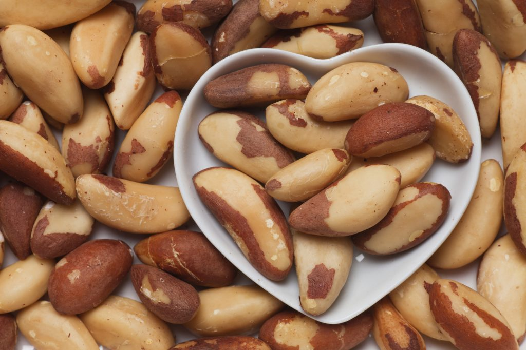 Brazil Nut Benefits From Ezra Cohen Montreal