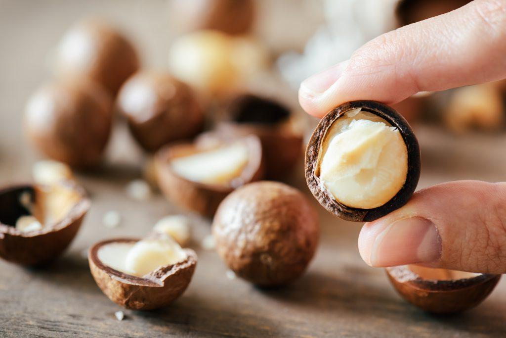 Avantages des noix de macadamia d'Ezra Cohen Montreal