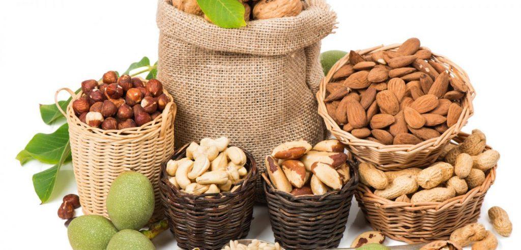 Histoire de noix de Ezra Cohen, McGill diplômé