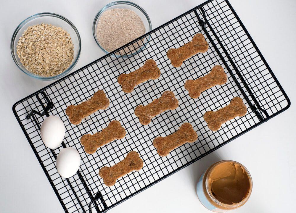 Délicieuses friandises pour chiens au beurre de noix